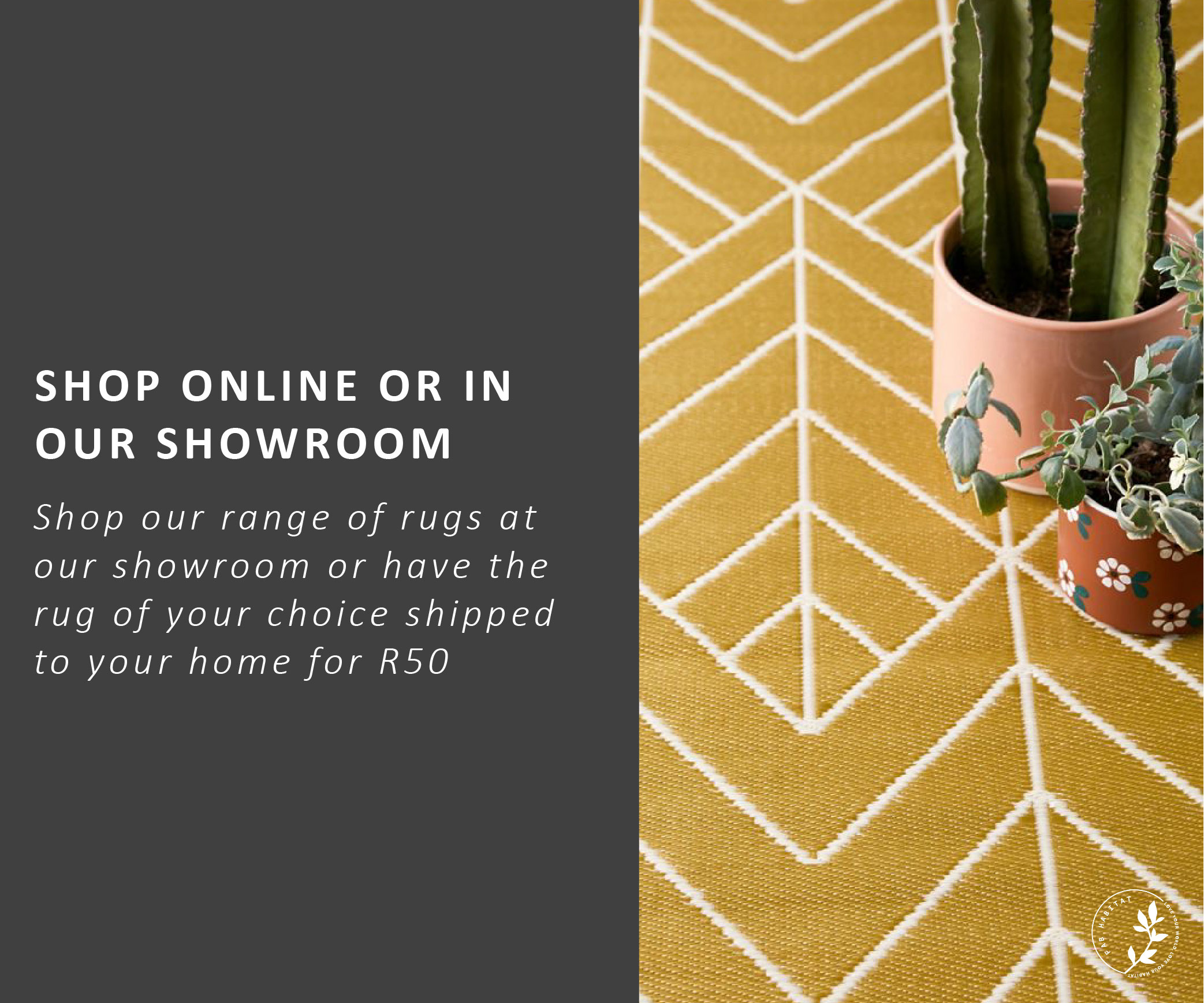 Shope-at-our-showroom-_wide-copy